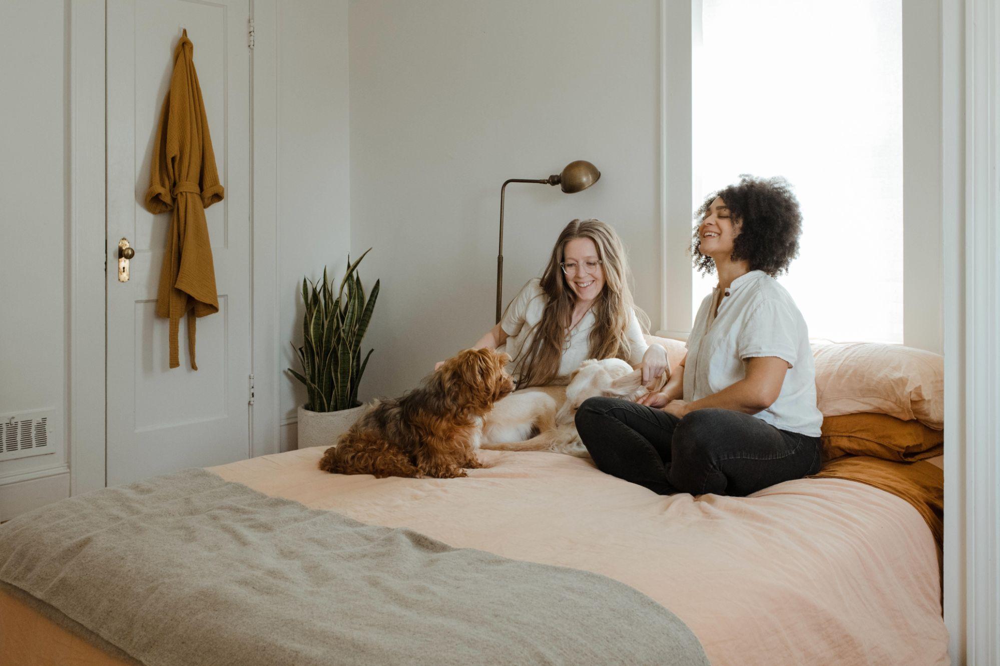 How do pet insurance deductibles work? - Top10US